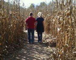 Corn stalks flank a couple who walk away hand in hand