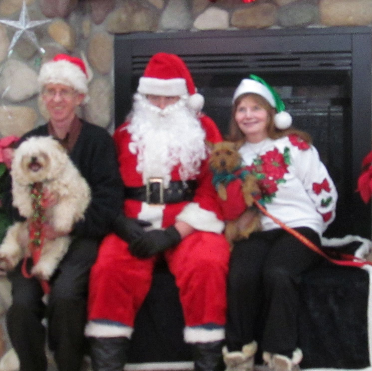 Ken and Sarah proudly display their dogs with Santa